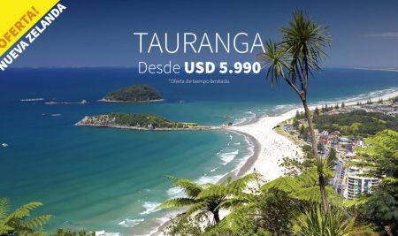 6 meses inglés en Tauranga desde USD 5.990